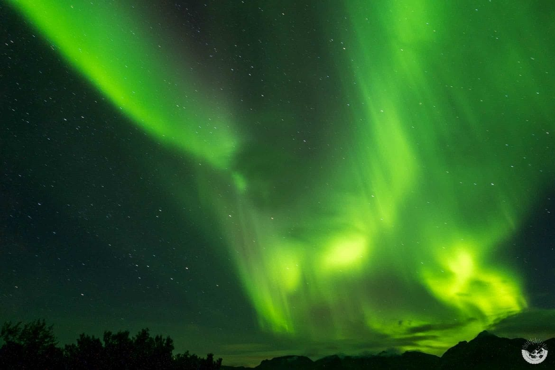 Nordlichter über den Lofoten, Norwegen