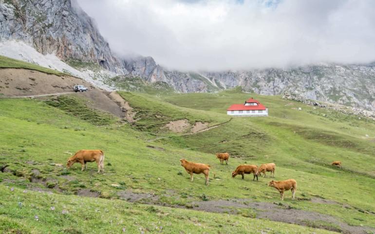 Wandern in den Picos de Europa, Spanien