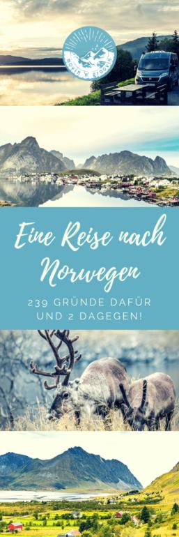 Eine Reise nach Norwegen?