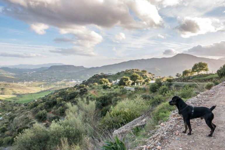 Wandern in Spanien: El Chorro