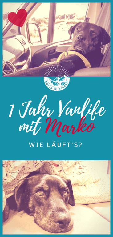 Ein Jahr on the Road mit Vandog Marko