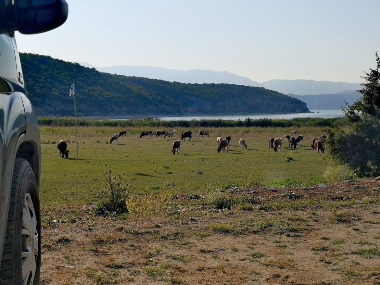 Griechenland Roadtrip: Prespasee